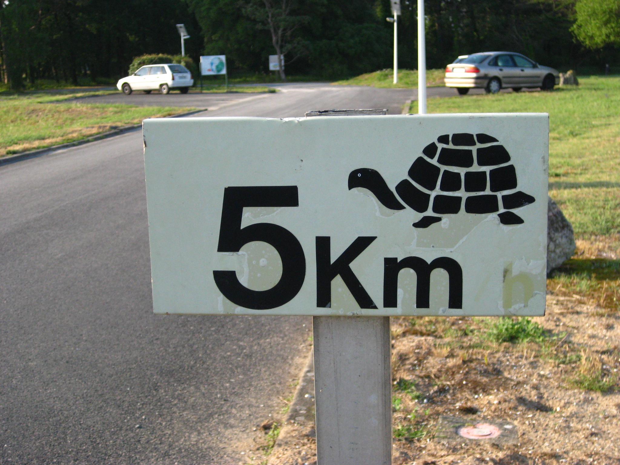 tortue5km